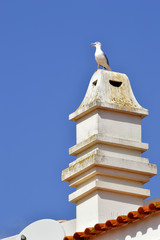A typical Portuguese chimney pot with a seagull on top
