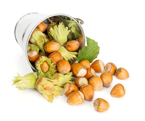 Hazelnuts flowing from tin bucket