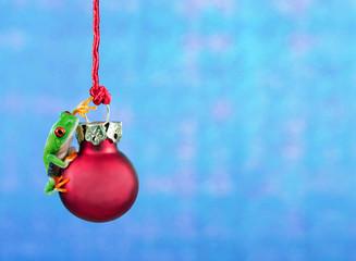 Frosch mit Christbaumkugel vor Hintergrund mit Textfreiraum