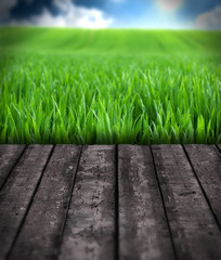 wooden floor with grass and sky