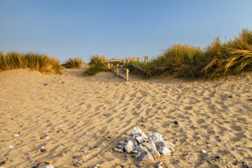 Scenic view of a golden sandy beach in the summer evening light