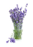 Fototapety lavender in a glass isolated on white