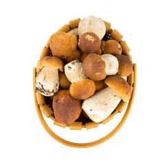 boletus mushrooms in a basket over white