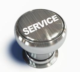 Pulsante service