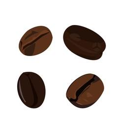Realistic illustration coffee bean