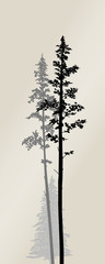 Vector silhouette of a pine fores
