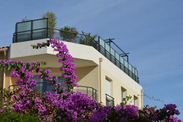 terrasse&bougainvillea