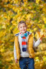 Cute boy with autumn leaves