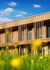 Holzhaus modern ökologisch Gebäude Holzfassade in Natur