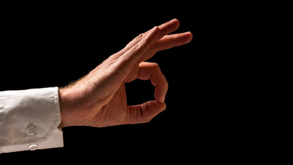 Human Hand in Okay Hand Sign