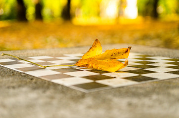 Stone chessboard in the park