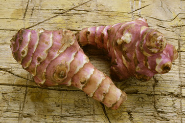 Helianthus tuberosus Topinambur Tupinambo Słonecznik bulwiasty