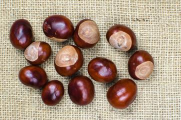 Sweet chestnuts collection