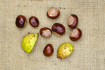 Group of sweet chestnuts