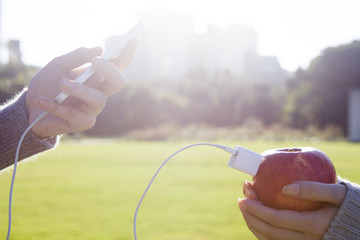 Charging the mobile phone from apple
