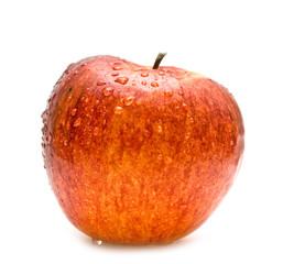 wet red apple
