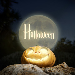 Halloween lighting pumpkin in moon light on a rock