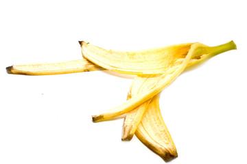 tailings of banana