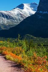 Autumn in Glacier