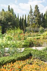 flowerbeds and rosary in nikitsky botanical garden