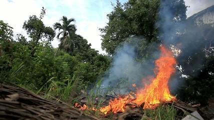 Forest fire on Koh Samui jungle. Thailand. HD. 1920x1080