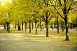 Paris automne - 72059412