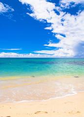 White Sand Sunshine Surf