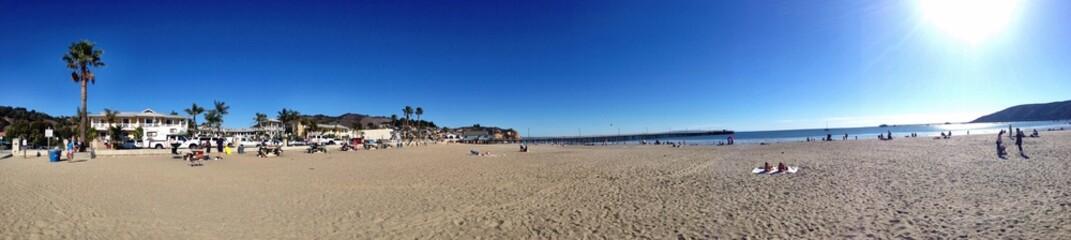 Awesome panorama of a Californian beach USA