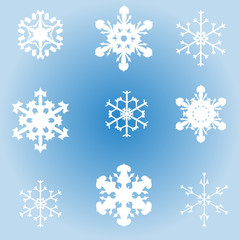 Vector image of snowflakes.