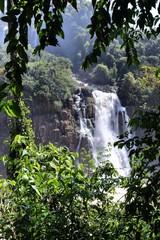 Brazil - Iguazu Falls National Park