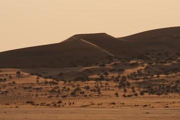 Düne der Namib bei Gobabeb im Abendlicht