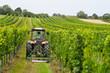 canvas print picture - Weinbauer arbeitet mit Traktor im Weingarten