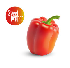 Vector illustration of yellow sweet peppers