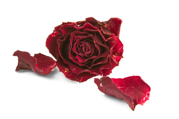 Dried red rose and two petals
