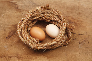 Fresh Egg With  Harvest on Wood Table Background