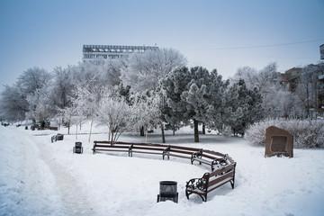Snow Donetsk, Ukraine. Snowy embankment, snowy trees.