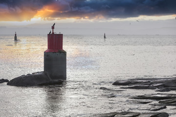 Concrete buoys in atlantic ocean in France in sunset