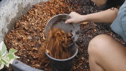 Worker scoop coconut coir fiber into flower pot fot planing tree