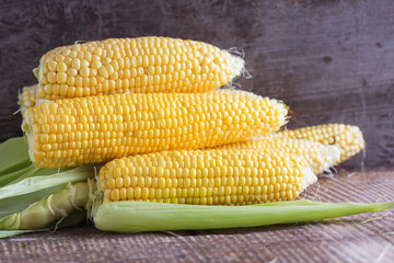 Fresh sweet corn cobs