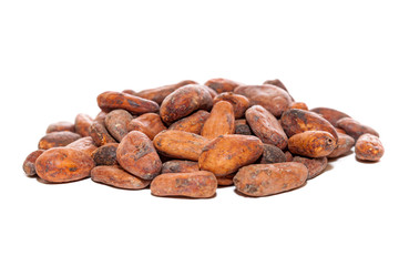 cocoa beans isolated over white