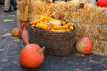 Full basket with ears of corn and pumpkins on a holiday