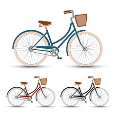 woman Style Bicycles set vector illustration