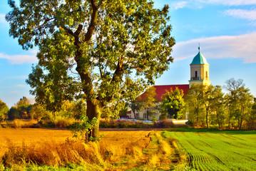 Typical Polish landscape