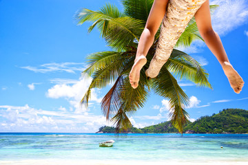 Legs of woman sitting on palm at tropical beach