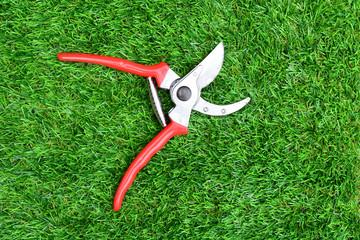 Red garden secateurs
