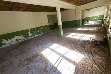 Floor of an abandoned school