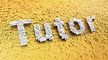 Pixelated Tutor