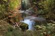 canvas print picture - Herbststimmung am Wasser