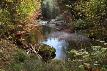 Herbststimmung am Wasser