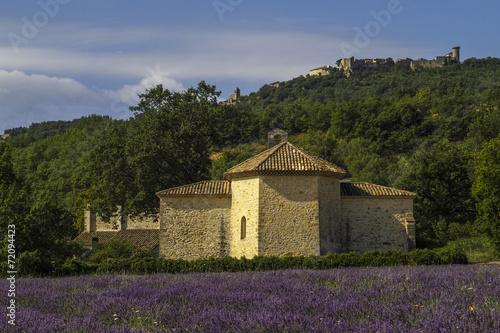 canvas print picture Provence, Luberon, Viens St Ferreol